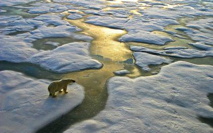 Het Noordpoolgebied warmt door klimaatverandering sneller op dan welk ander gebied ter wereld ook. De zee-ijsbedekking neemt daardoor sterk af. Daardoor treedt een kettingreactie op die ijzig weer op het noordelijk halfrond veroorzaakt.beeld iStock