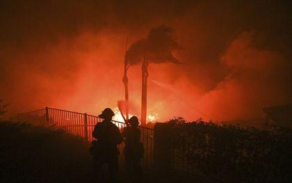 Bosbranden in het zuidoosten van de VS waren vorig jaar heviger dan ooit. De schade liep op tot zo'n 16 miljard dollar.beeld AFP, Robyn Beck