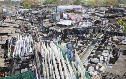 Openluchtwasserij Dhobi Ghat in India. beeld Sjaak Verboom