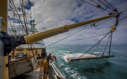 Een pulsvisser is aan het werk op het schip TX-38.beeld ANP, Niels Wenstedt