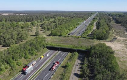 Bij de opening in 1988 van snelweg A50 tussen Arnhem en Apeldoorn maakte Nederland kennis met ecoducten: de wildwissel bij Terlet (foto) en die bij Woeste Hoeve.beeld VidiPhoto