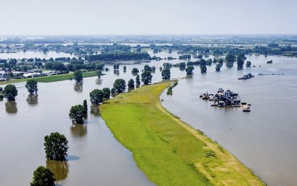 Onderlopen uiterwaarden van de Maas bij Alphen. De rivier krijgt daar veel ruimte, waardoor het water minder hoog komt.beeld ANP, Sem van der Wal
