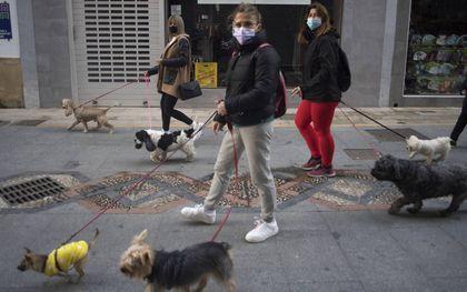 Vrouwen op pad met honden in het centrum van de Spaanse stad Ronda. beeld AFP, Jorge Guerrero