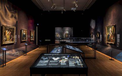 beeld Mauritshuis