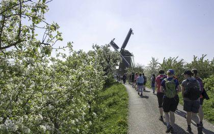 Bloesemtocht, nu in heel Nederland.beeld George Burggraaff