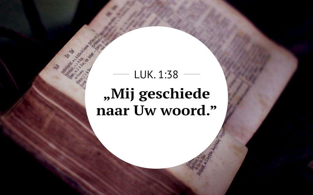 Meditatie | Lukas 1:38 | Geloofsdaad. beeld Unsplash & RD
