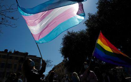 De transgendervlag. beeld AFP, Valery Hache