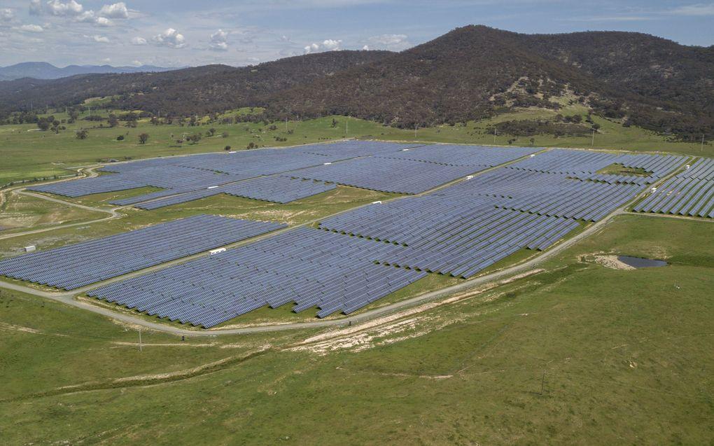 Een zogenaamde zonneboerderij in Williamsdale, Australië. beeld EPA, Mick Tsikas