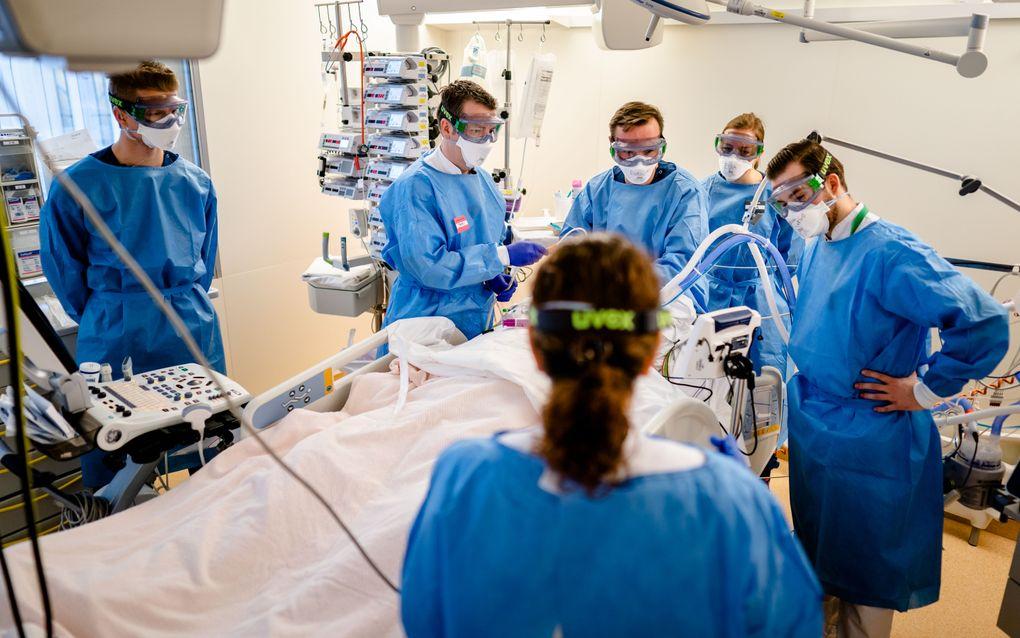 Medewerkers op de speciale Covid-IC afdeling in het Leids Universitair Medisch Centrum. beeld ANP, Bart Maat